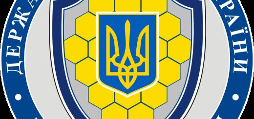 logo DSUPP